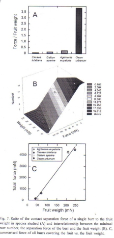Figure 3 - Graphs of results of tests from Gorb et al [1]