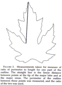 Figure 3 - the profile method