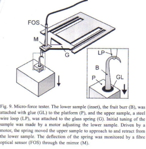 Figure 6 - micro force tester as used by Gorb et al [1]