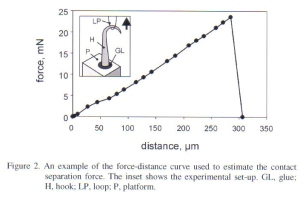 Figure 7 - Contact separation forces (hooks have high variability in shaft length) from Gorb et al [2]