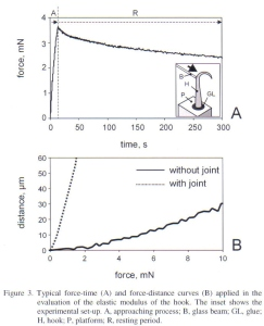 Figure 8 - testing for elastic modulus from Gorb et al [2]